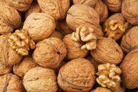 Buy walnut. Zakupivli voloskovo Gorkha wholesale