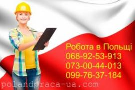 Services of the Visi to Europe, the robot in Poland